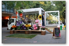 3d-mobile-showrooms-74